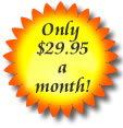 Your Own Online Odering System for Less  Than $1.00 a day!